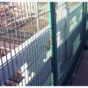 供应桥梁隔离栅,防护网