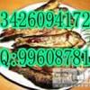 供应韩式小酥鱼机、小酥鱼制作原料、怎样制作小酥鱼呢