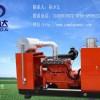 供应30千瓦沼气发电机组