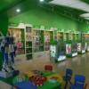 2012大树益智玩具加盟生意最火热,益智玩具市场前景大