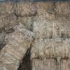 供应孟加拉进口E级黄麻纤维