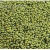 供应精选优质绿豆