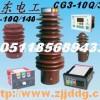 DXN户内高压带电显示装置,户内带电显示装置
