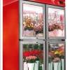 供应水果蔬菜展示柜,金宝典水果蔬菜展示柜