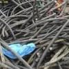 求购废电缆,电力废电缆回收,通信废电缆回收,旧电线回收