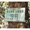 工厂树牌制作、植物标识挂牌、景区树牌制作、公园树木挂牌