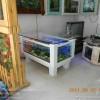 福州市清洗鱼缸 景致护理 鱼草养护 鱼缸保养 鱼缸维修